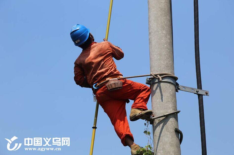"""高温下的""""飞人""""――电力工人修电路护电网"""