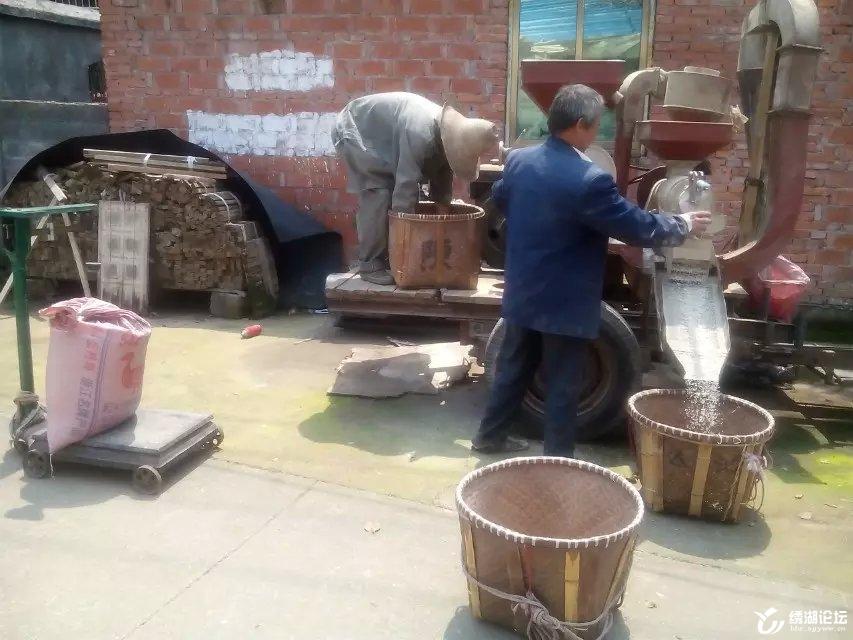 钟村碾米磨粉人