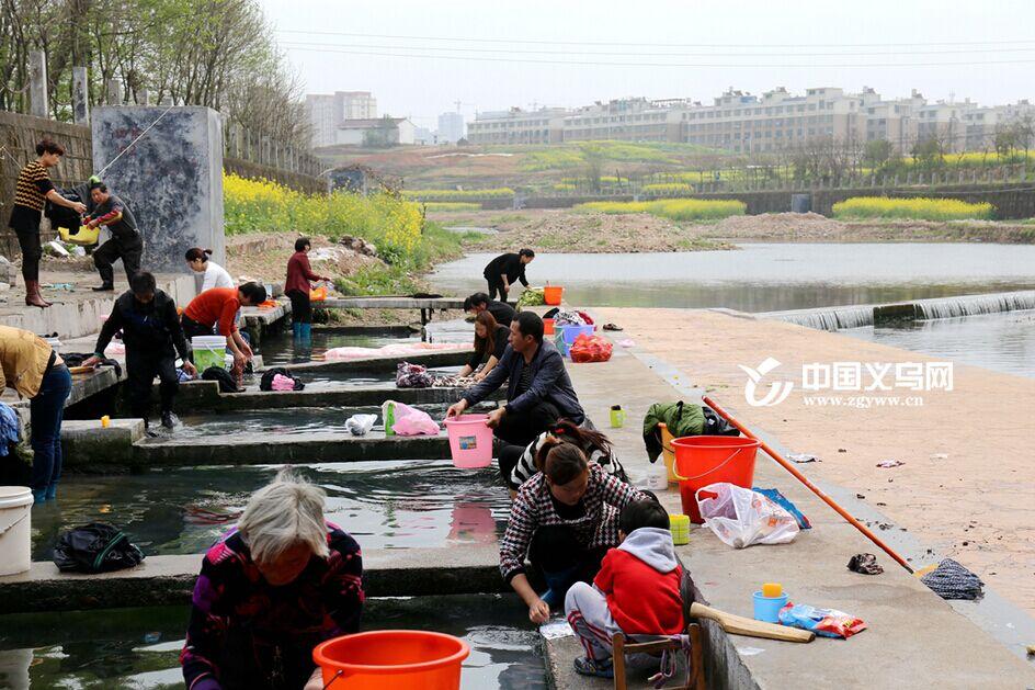 春风又绿苏溪岸――水清岸美引附近村民扎堆洗衣
