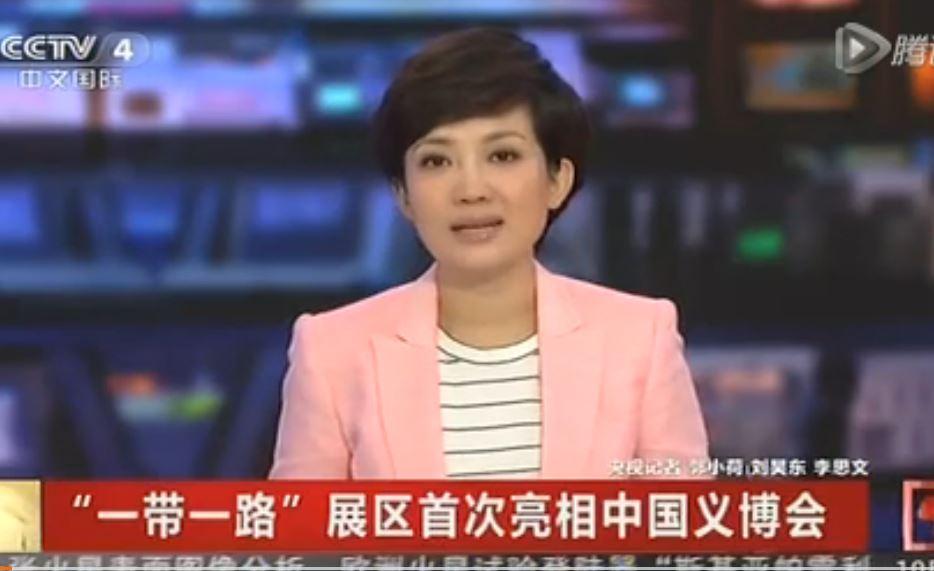"""【央视】""""一带一路""""展区首次亮相中国义博会"""