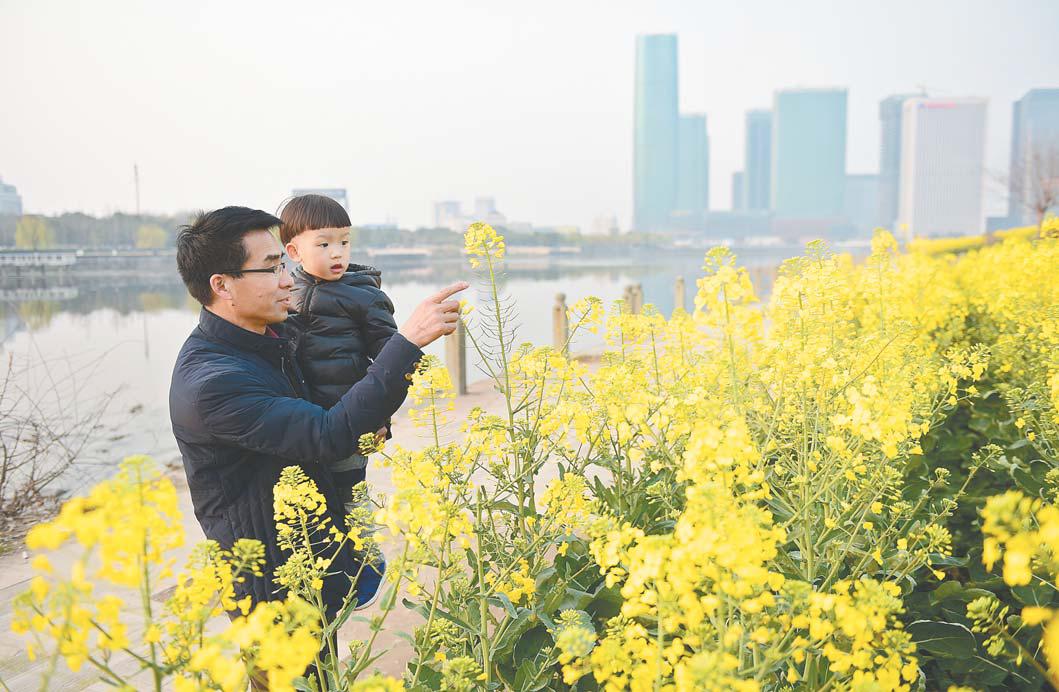 义乌江畔景如画