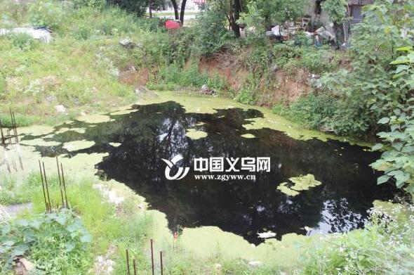 义乌福田街道下沈村:解决问题促发展 旧村需焕发新活力