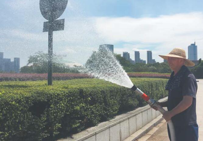 义乌园林工人:用汗水装点美丽城市