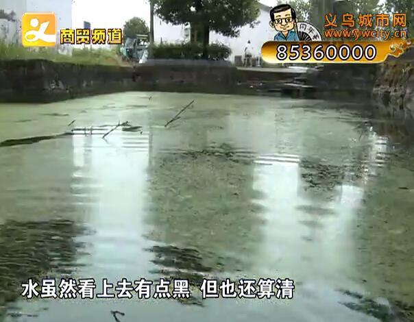 村民反映池塘脏难洗衣服 村干部称近期解决