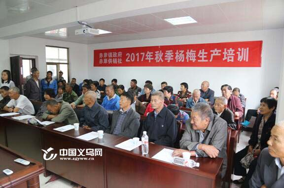 专家实地指导 义乌市农函大在赤岸镇举办杨梅培训班