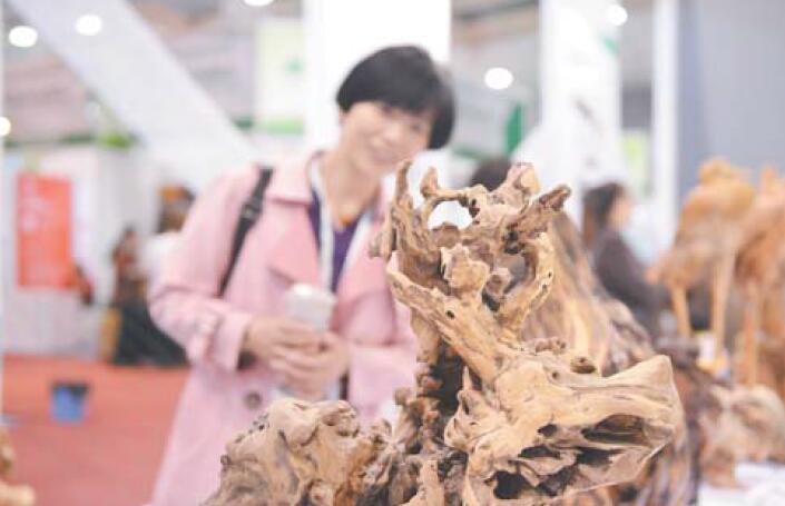中国创意林业产品展创意林品展新意:优秀作品竞风流