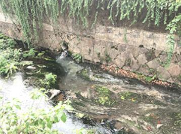 下王一区有污水直排青口溪 江东街道:尽快排查 对症下药