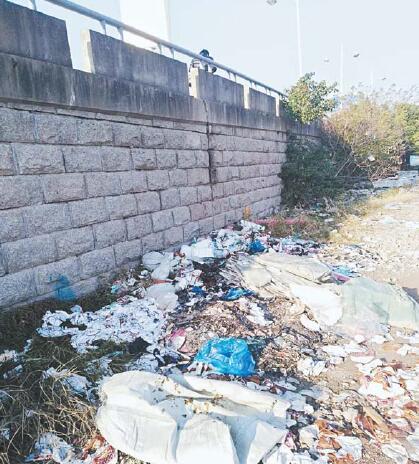 桥边堆满垃圾 设施遭破坏 经发大桥:脏乱环境玷污市容