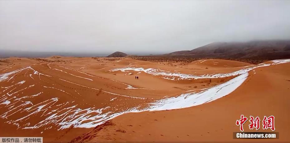 连续第二年!撒哈拉沙漠北部城市再迎降雪