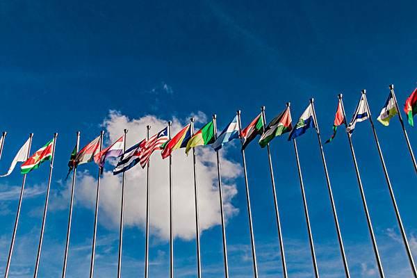 """金华抢占联合国采购大市场 企业走向全球赢得""""金名片"""""""