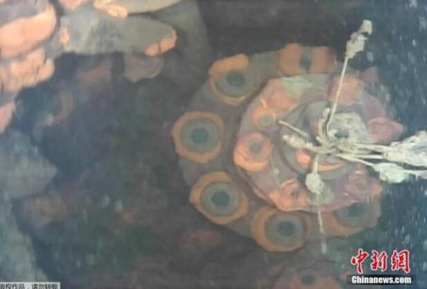 调查:福岛核电站反应堆外侧放射量仍达致死水平