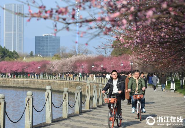 义乌气温回升有望入春 本周除了赏花还要记得赏月
