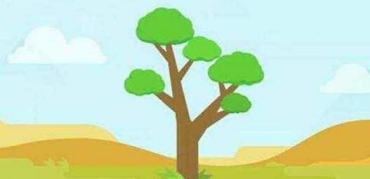 """""""互联网+""""种树蚂蚁森林投入5亿元支持绿色发展"""