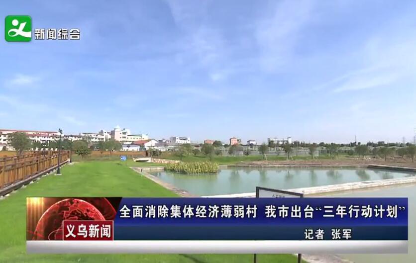 """全面消除集体经济薄弱村 义乌出台""""三年行动计划"""""""