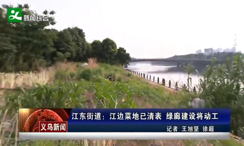 江东街道:江边菜地已清表 绿廊建设将动工