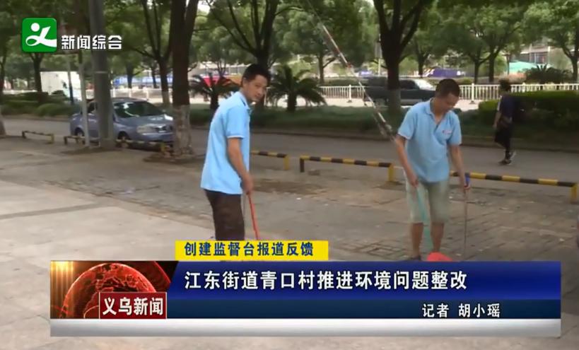 江东街道青口村推进环境问题整改