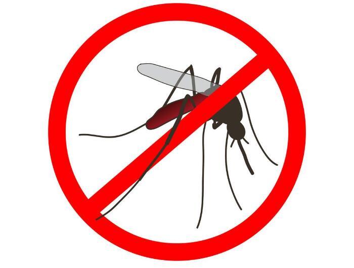 义乌市疾控中心指导社区开展灭蚊