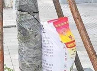 为行道树挂袋补水
