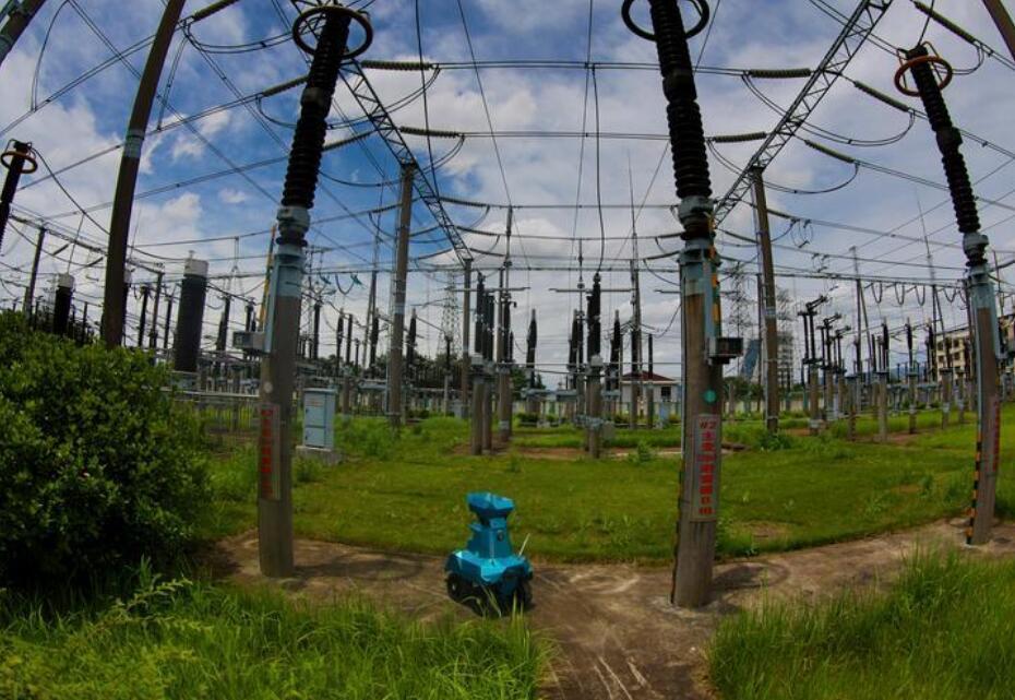 【浙江日报】义乌电力助力沼气发电项目 打造综合能源新业态