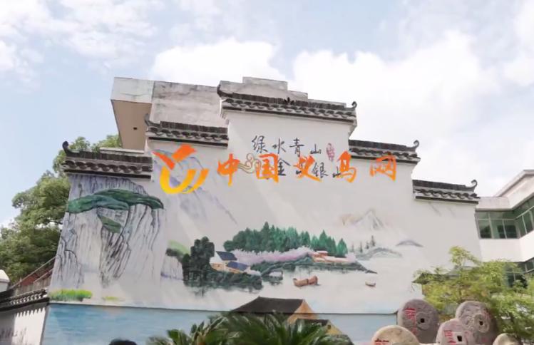 视频 | 行走义乌看变化——苏溪 大陈
