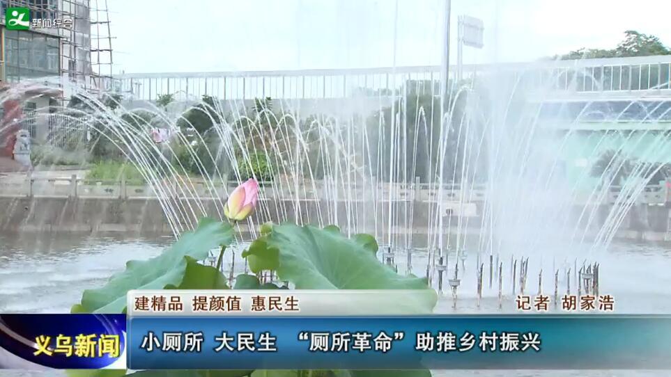 """小厕所 大民生 """"厕所革命""""助推乡村振兴"""