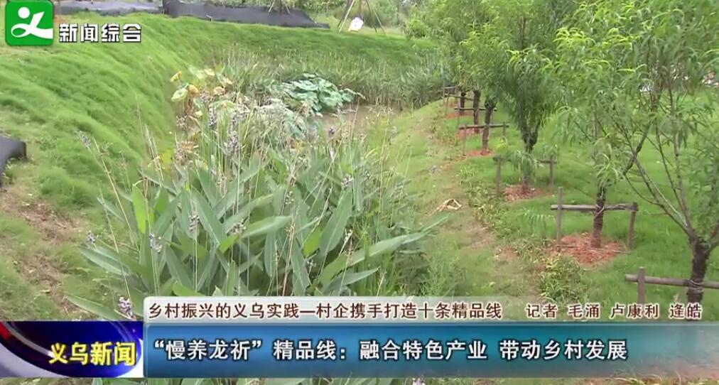 """""""慢养龙祈""""精品线:融合特色产业 带动乡村发展"""
