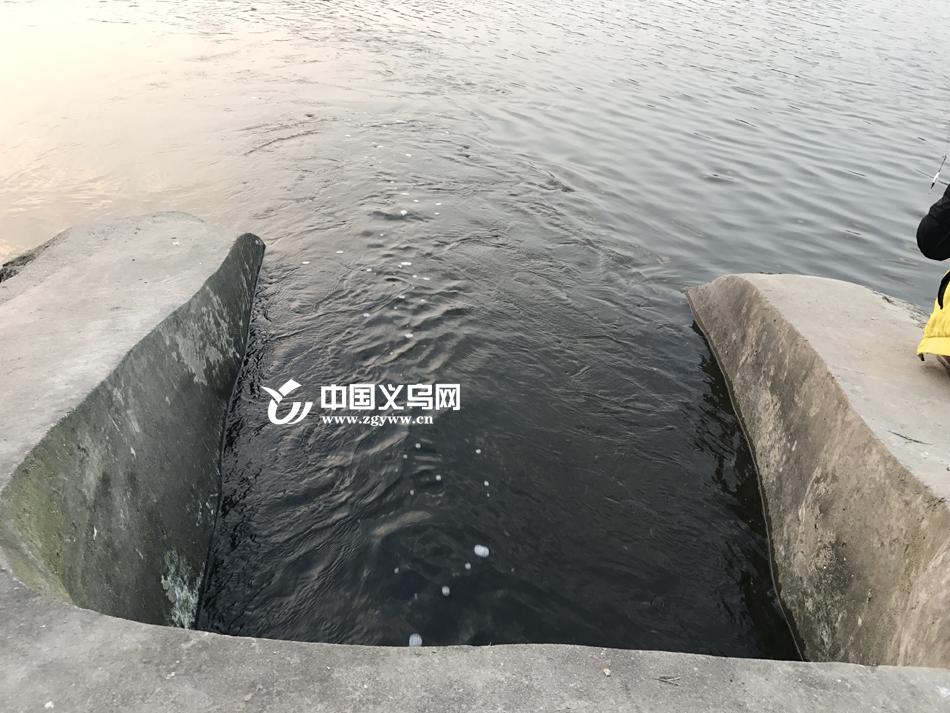 """网友报料""""义乌江有黑水流入"""" 部门回应:是视觉效果"""