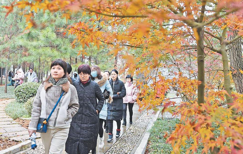 义乌:冬日乡村游热度不减