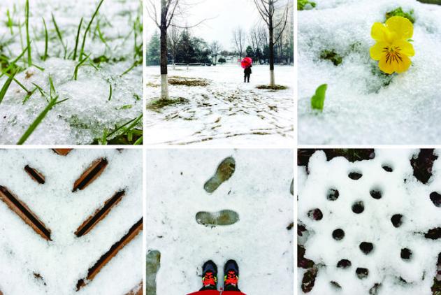 雪趣 义乌迎来2019年的第一场雪