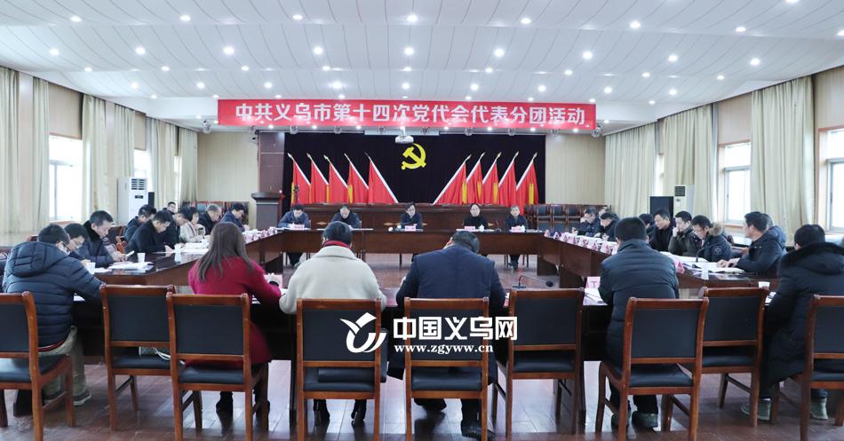 义乌开展党代表分团活动 广泛征求全会报告的意见建议
