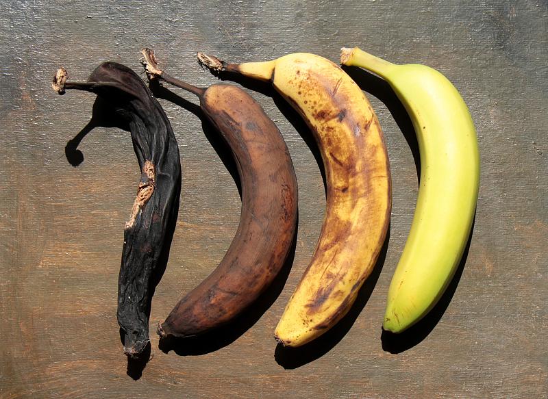 带黑斑的香蕉有毒不能吃?专家辟谣:对身体无害