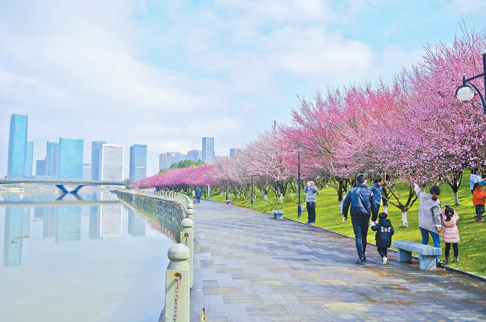 义乌:春光美景 增色商城