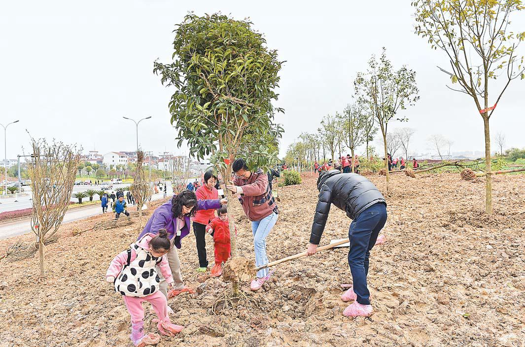 义乌:认捐一棵树 共创文明城