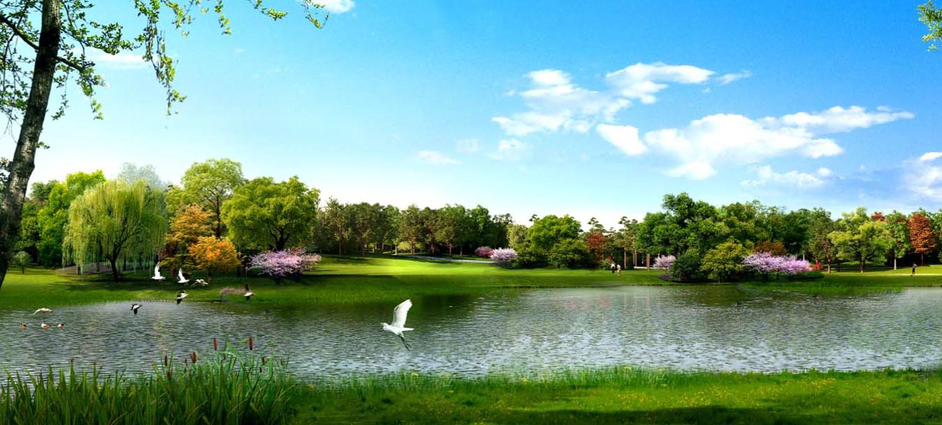 """城市绿肺概念规划初稿太惊艳,住在周边怎一个""""幸福""""了得"""