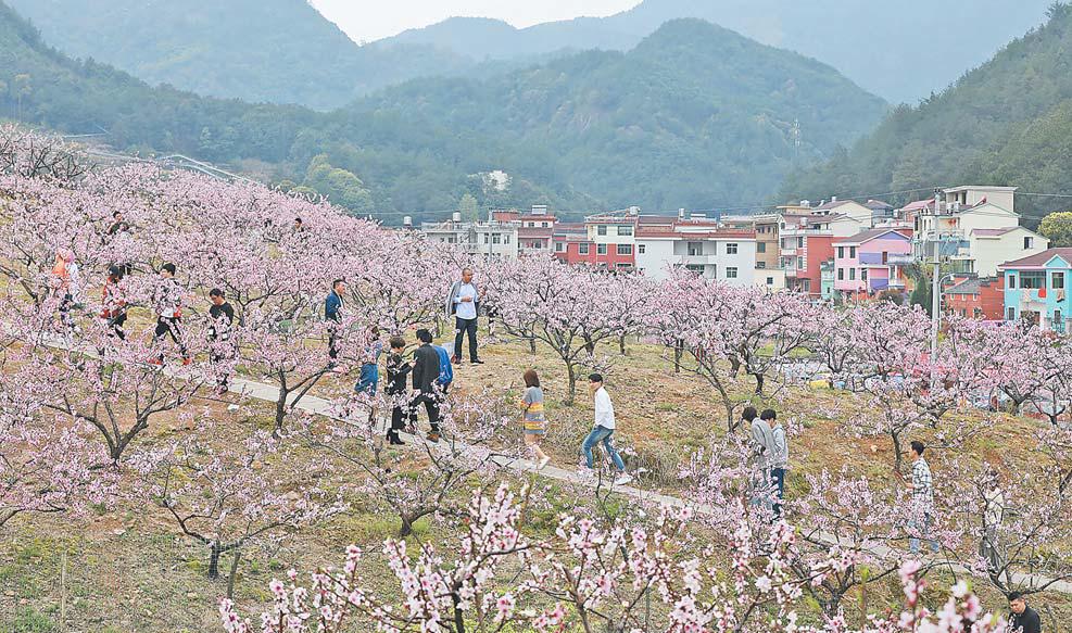 义乌:和美乡村 生态旅游