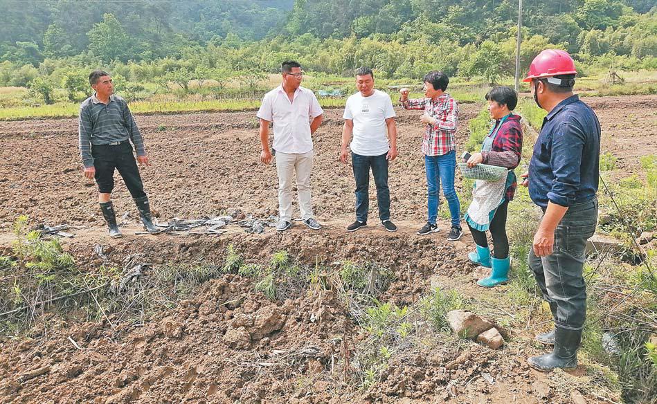 """义乌:推进""""标准地""""改革 提升农业现代化水平"""