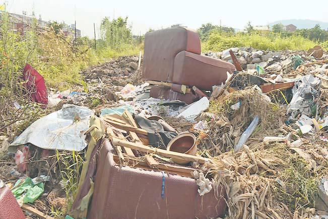 【改革体验】城西西俞村:村内整治环境 垃圾偷倒村外