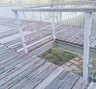 """【改革体验】义乌江滨绿廊湿地公园:一些""""病症""""很刺眼"""