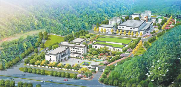 义乌:强基础 抓长效 城乡环境再提升
