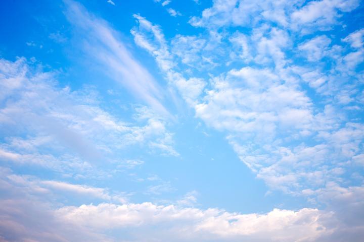 宋扬:我有一片天空