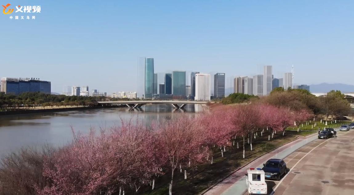 春暖花开,义乌等您!