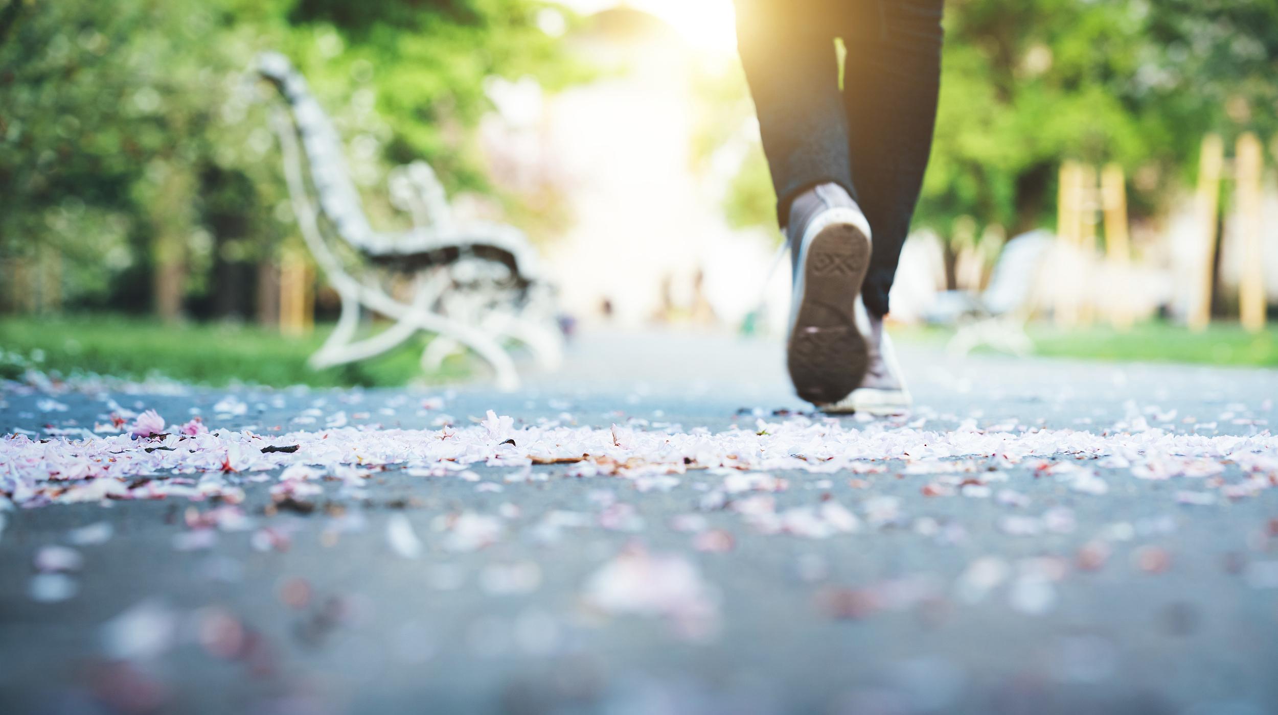 每天猛走两三万步 你是否也走入了这样的运动误区