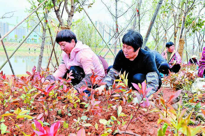 义乌江美丽城防建设