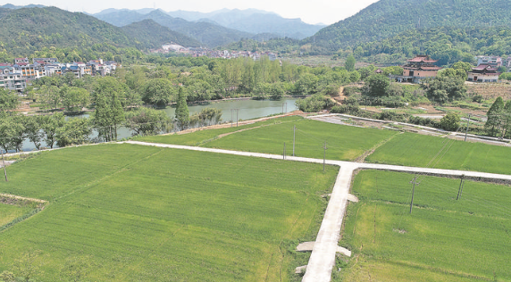农业标准地助力乡村振兴