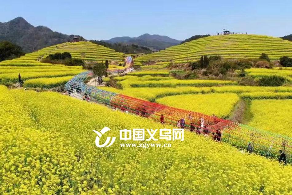 """义乌赤岸为""""美丽城镇""""向""""美丽经济""""转化按下""""快进键"""""""
