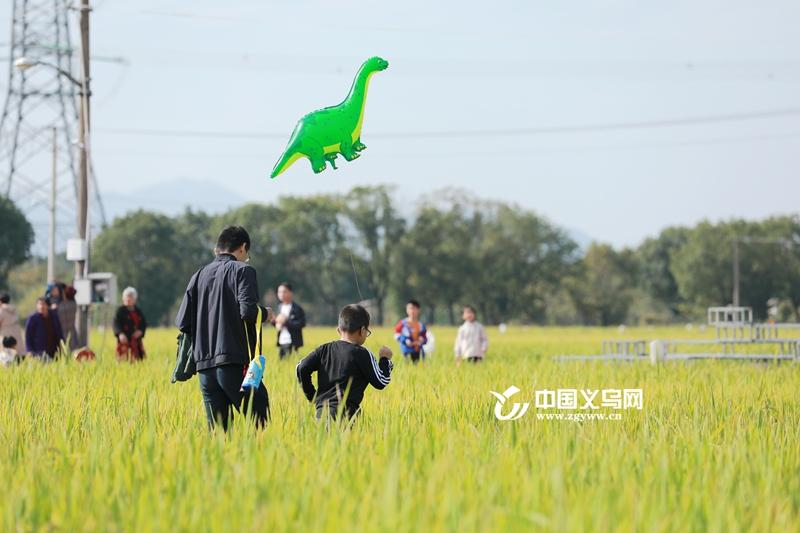 2020年义乌市第二届稻田文化旅游节开幕