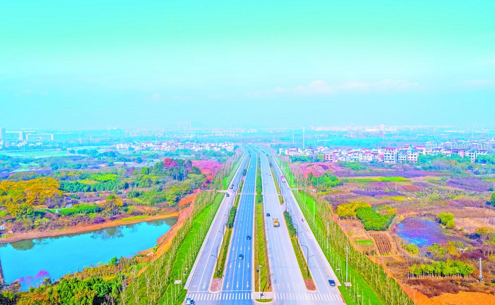 义乌五大路段森林通道工程完工