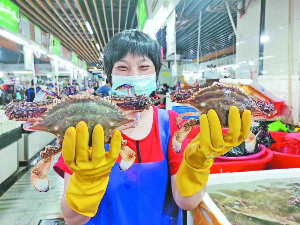 东海梭子蟹重回餐桌